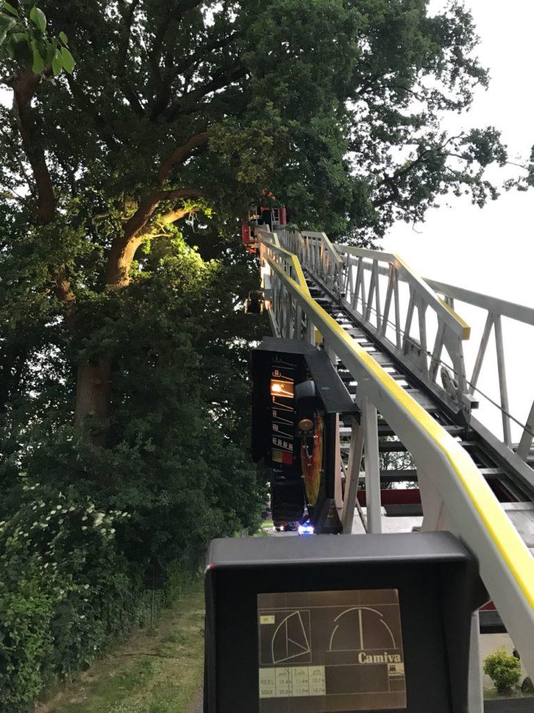 Baum droht auf Fahrbahn zu stürzen, Unterstützung FF-Bakum