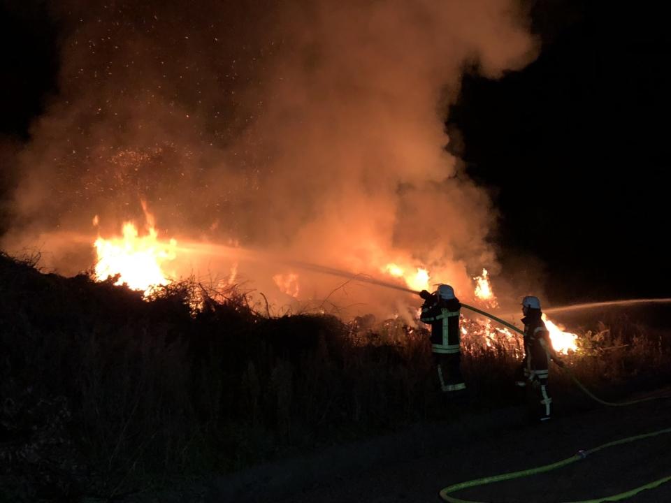 Brand eines Laub/Baumrestehaufens