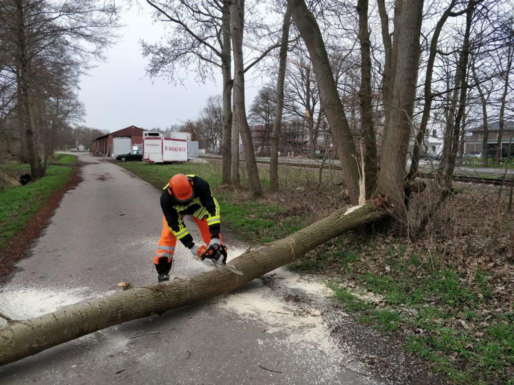 Sturmschaden, Baum auf Fahrbahn